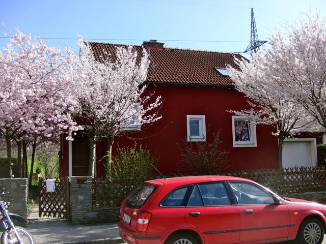 Haus-in-Traun_0650-2555258_Michaela-Girardi_b