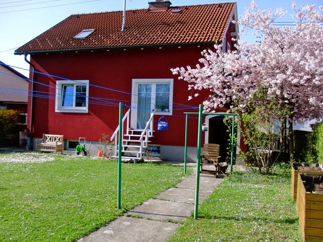 Haus-in-Traun_0650-2555258_Michaela-Girardi_f
